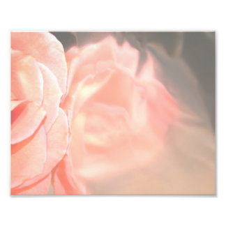 Light pink rose reflection in silver art photo