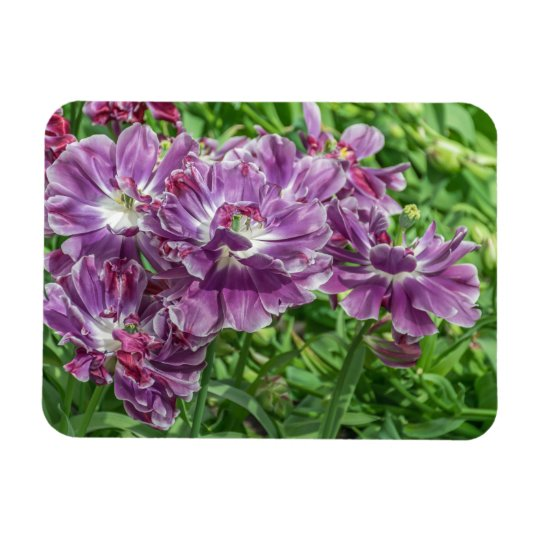 Light purple flowers fridge magnet