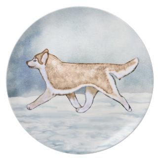 Light Red & White Blue Eyes Siberian Husky Plate