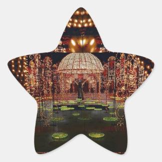 LIGHT SHOW :   Festival of Lights Star Sticker