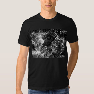 Light Through the Branches T Shirts