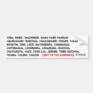 light to the darkness bumper sticker