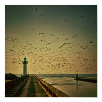 Lighthouse and gulls poster