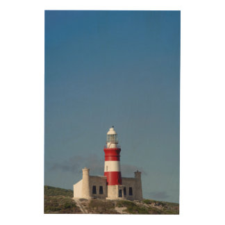 Lighthouse At Cape Agulhas, Western Cape Wood Canvases
