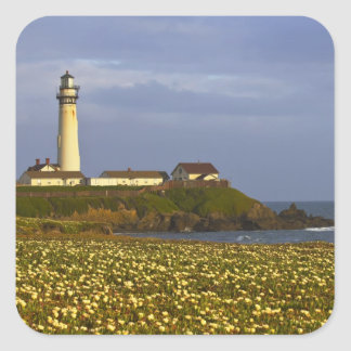 Lighthouse at Pigeon Point State Beach in San Square Sticker