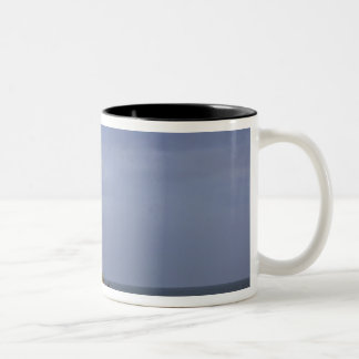 Lighthouse at Pigeon Point State Beach in San Two-Tone Mug