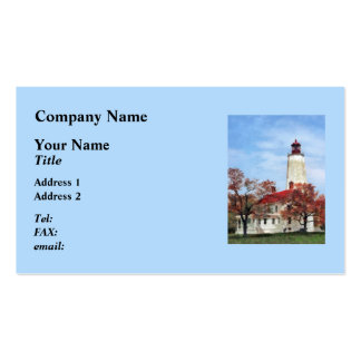 Lighthouse at Sandy Hook Pack Of Standard Business Cards
