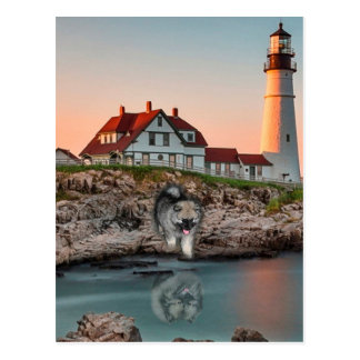Lighthouse Reflections Postcard