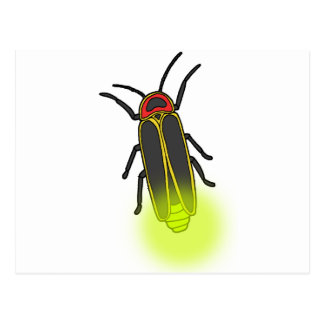 lightning bug lit postcard
