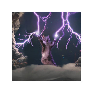 Lightning cat--kitty-pet-feline-pet cat -kittens canvas print