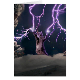 Lightning cat--kitty-pet-feline-pet cat -kittens card