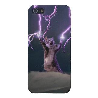 Lightning cat--kitty-pet-feline-pet cat -kittens case for the iPhone 5