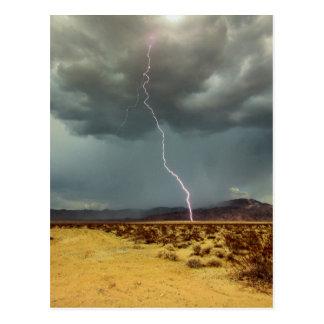 Lightning Joshua Tree Color Postcard