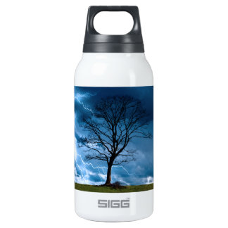 Lightning Strike 0.3 Litre Insulated SIGG Thermos Water Bottle