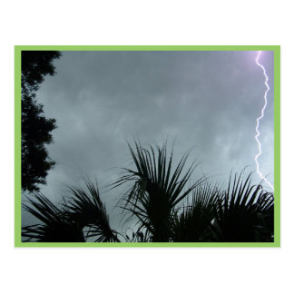 Lightning Strike In Tampa Fl, Post Card