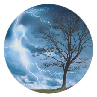 Lightning Strike Plates