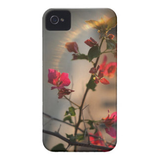 Lights! iPhone 4 Case-Mate Cases