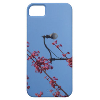 Lights of Spring iPhone 5 Cases