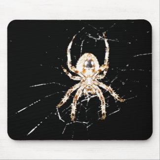 Like Spiders? Mouse Pad