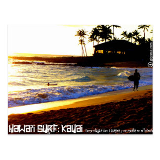 Like traveling with 1 to surfer by Kauai Postcard