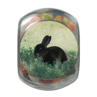 Lil Black Bunny Glass Candy Jars