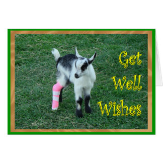 Lil Bunny Get Well-customize Card