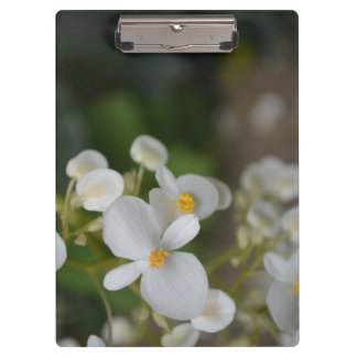 Lil' Flowers Clipboard
