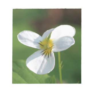 Lil White Flower Notepad