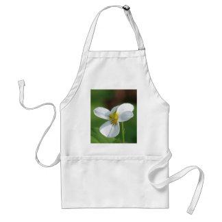 Lil White Flower Standard Apron