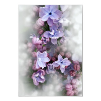 Lilac blooming card