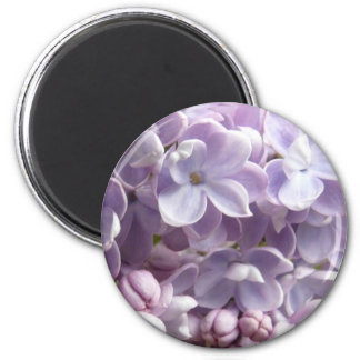 Lilac Blossoms Magnet