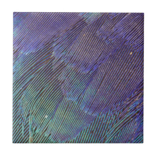 Lilac-breasted Roller feathers Ceramic Tile