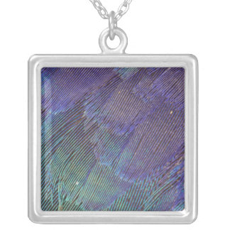 Lilac-breasted Roller feathers Silver Plated Necklace