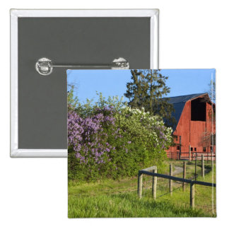 Lilac bushes in bloom and magpies in the trees 15 cm square badge
