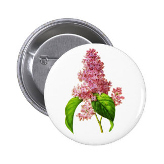 Lilac by Pierre Joseph Redoute 6 Cm Round Badge