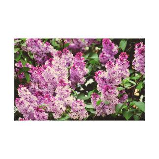 Lilac flowers canvas prints