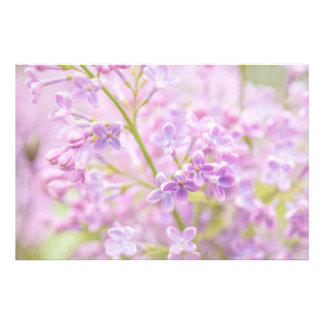 Lilac Flowers Mist Photographic Print