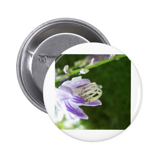 Lilac Lavender Purple Spring Flowers in the Mornin Button