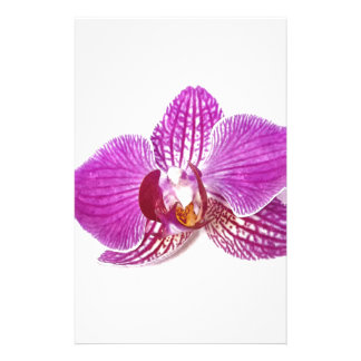 Lilac phalaenopsis floral aquarel painting stationery