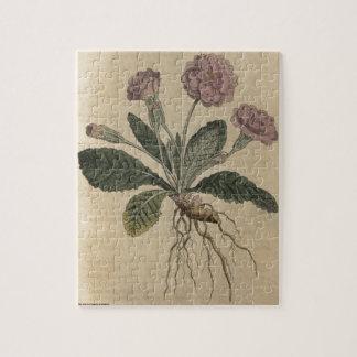 Lilac Primrose Jigsaw Puzzle