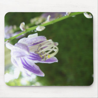 Lilac Purple Spring Flowers CricketDiane Mouse Pad
