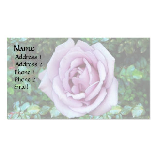 Lilac Rose Pack Of Standard Business Cards