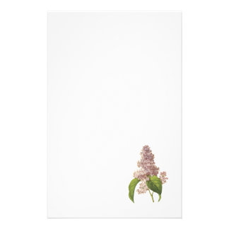lilac(Syringa sp.) by Redouté Personalized Stationery