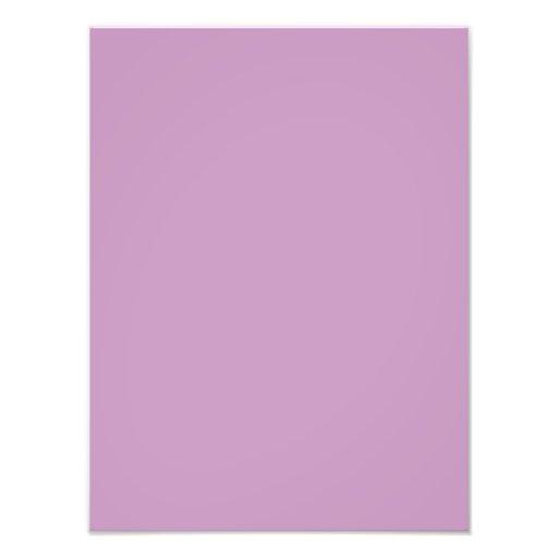 Lilac Violet Purple Color Trend Blank Template Photograph