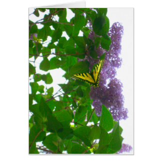Lilacs and Swallowtail Yellow Butterfly card
