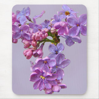 Lilacs in Springtime Mouse Pad
