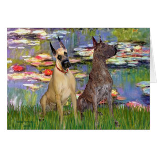 Lilies 2 - Great Danes (two) Card