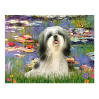 Lilies (#2) - Shih Tzu #3 Postcard