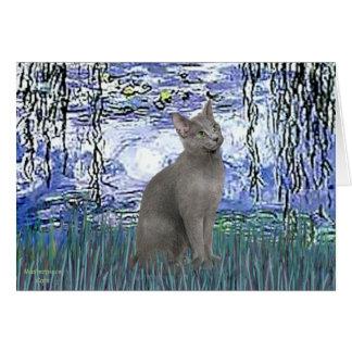 Lilies 6 - Russian Blue cat Card