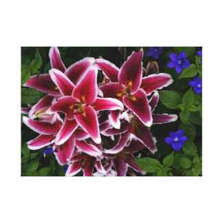 Lilies and Violets Photo Canvas Print